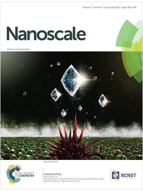 1044_nanoscale_f2c-900