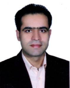 Dr. Hamidreza Arasteh
