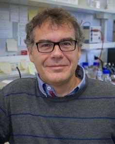 Prof. Felix Ritort