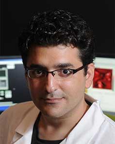 Prof. Ozgur Sahin