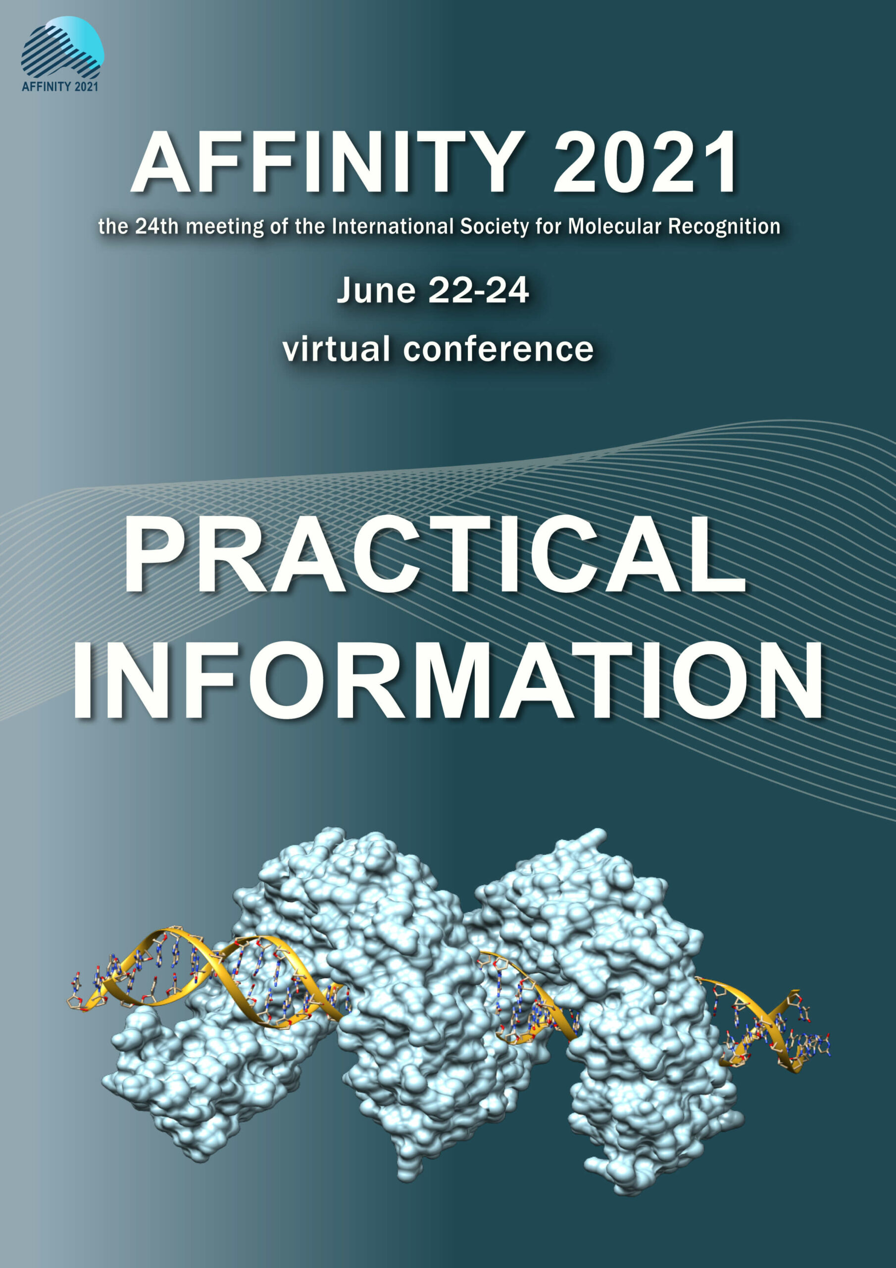 Online conference advices and best practice